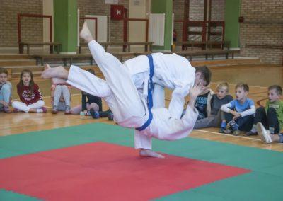 Judo_2018 (11)