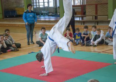 Judo_2018 (3)