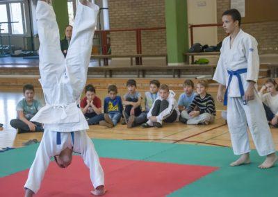 Judo_2018 (4)