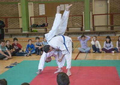 Judo_2018 (6)
