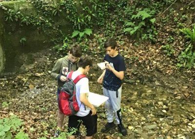 ND Organizmi celinskih voda (1)