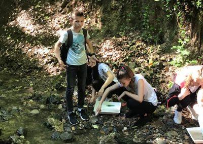 ND Organizmi celinskih voda (3)