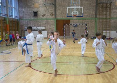 Karate (16)
