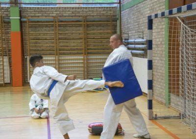Karate (18)