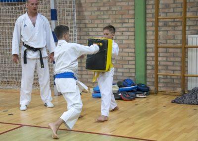 Karate (35)