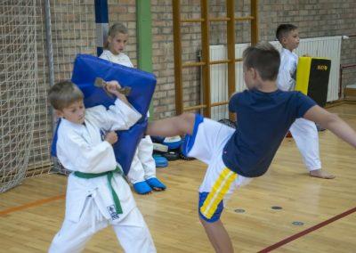 Karate (37)