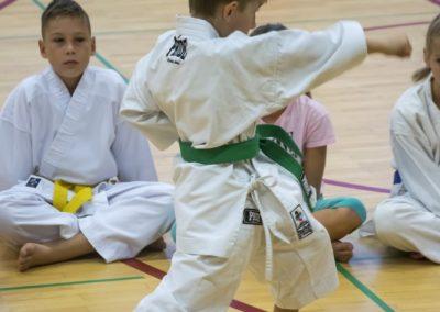 Karate (7)