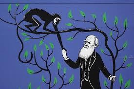 NARAVOSLOVNI DAN 9.razred – EVOLUCIJA